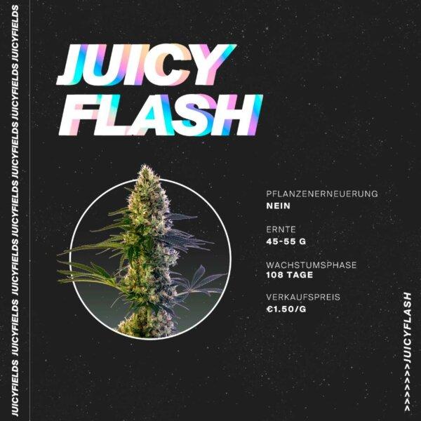juicyfields flash